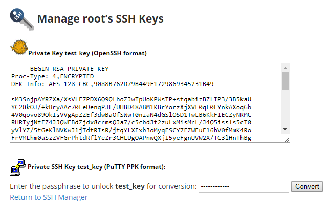 ssh id_rsa key not working